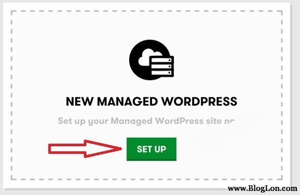 install new managed WordPress