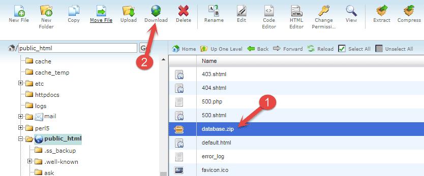 Download database backup file